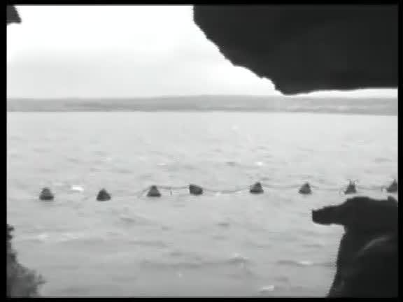 Juin 1944, Cherbourg